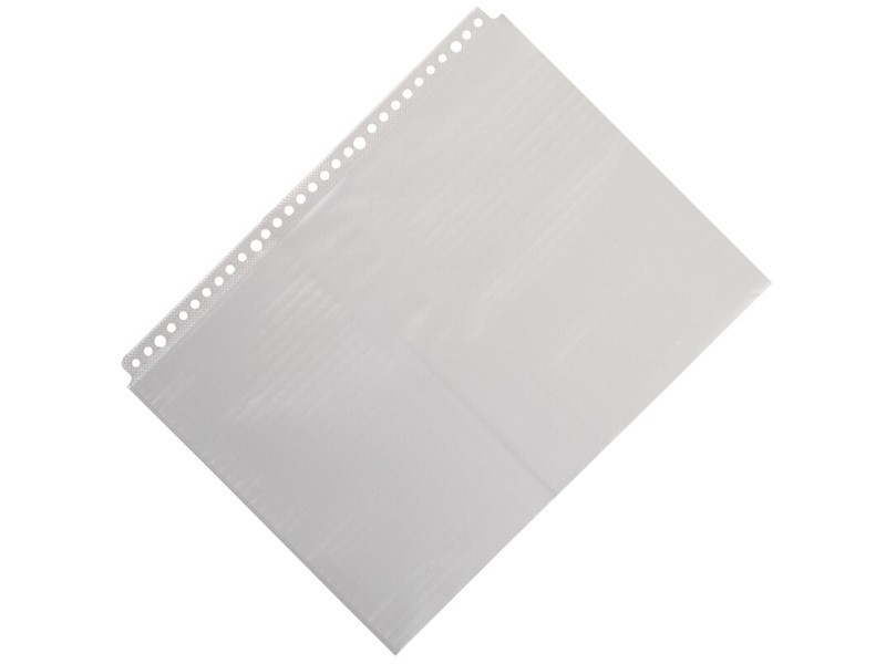 A1968 齐心A4 30孔文件保护袋 20/包